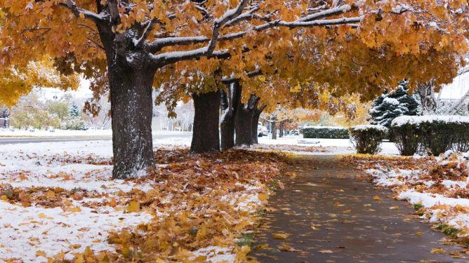 Przedwczesne nadejście zimy. <br />Wiemy, jak długo zostanie z nami śnieg